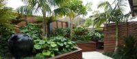 subtropical garden design - Google Search | landscaping ...