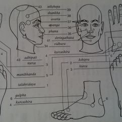 Face Pressure Points Diagram M1008 Cucv Wiring Marma Ayurveda Esthiology Science Pinterest
