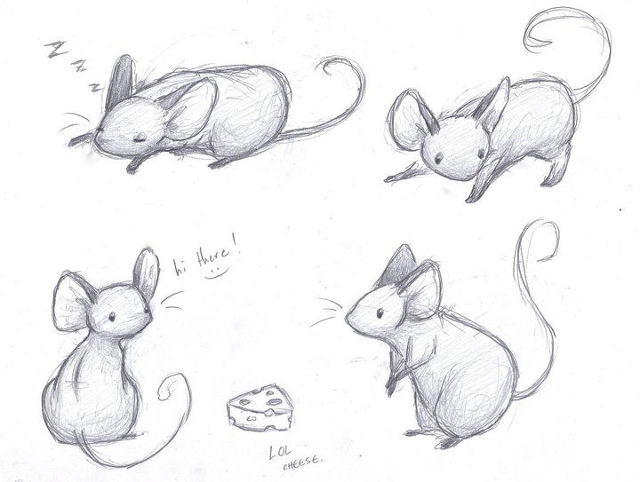 Mice Sketches by sleighbelles.deviantart.com on