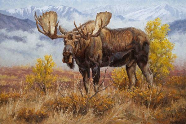 """valley King"" Chip Brock - Wildlife Art Of"