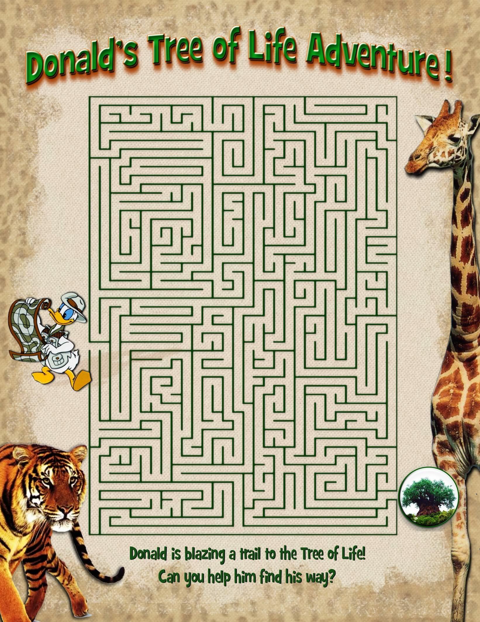 Donald S Tree Of Life Maze Photo Donaldstreeoflifemaze