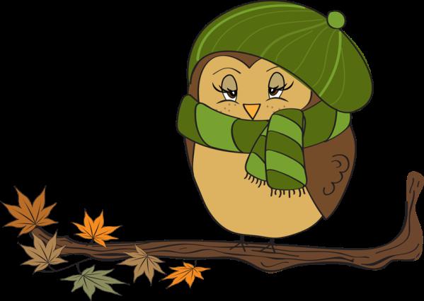 owl clipart kids