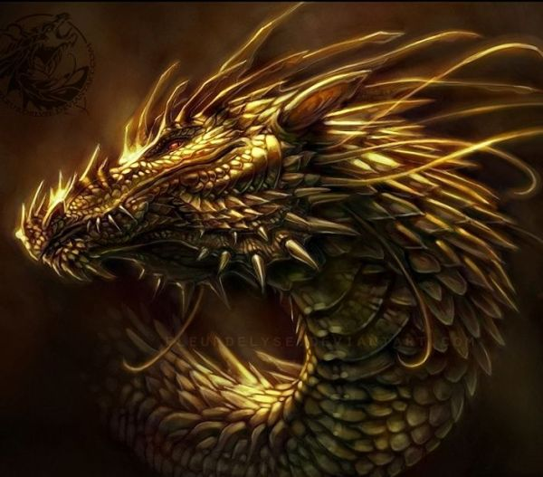 golden dragon Dragon Love! Pinterest Artworks Brown
