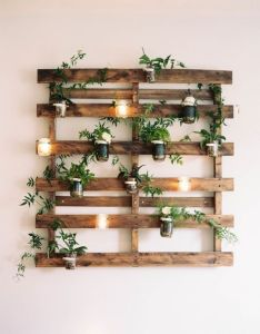 indoor garden ideas for wannabe gardeners in small spaces also rh pinterest