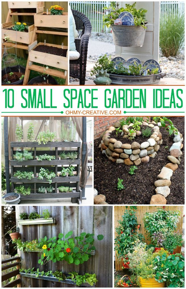 1o Small Space Garden Ideas Gardening Herbs Garden And
