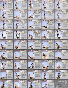 Vibration workout exercises images also rh workoutexerciseszukishibaspot