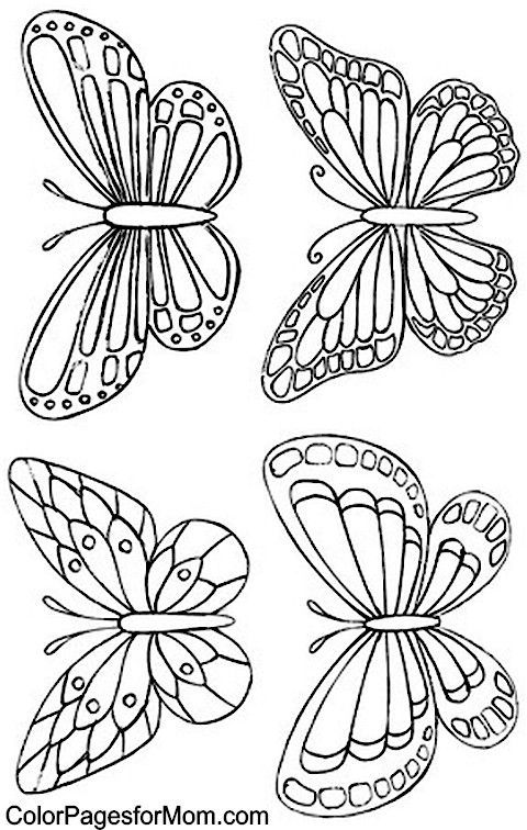 Color Pages for Mom: Butterfly Coloring Page 34