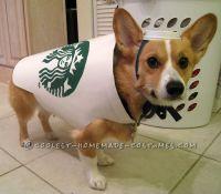 Starbucks Dog Costume - Easy and Inexpensive | Starbucks ...