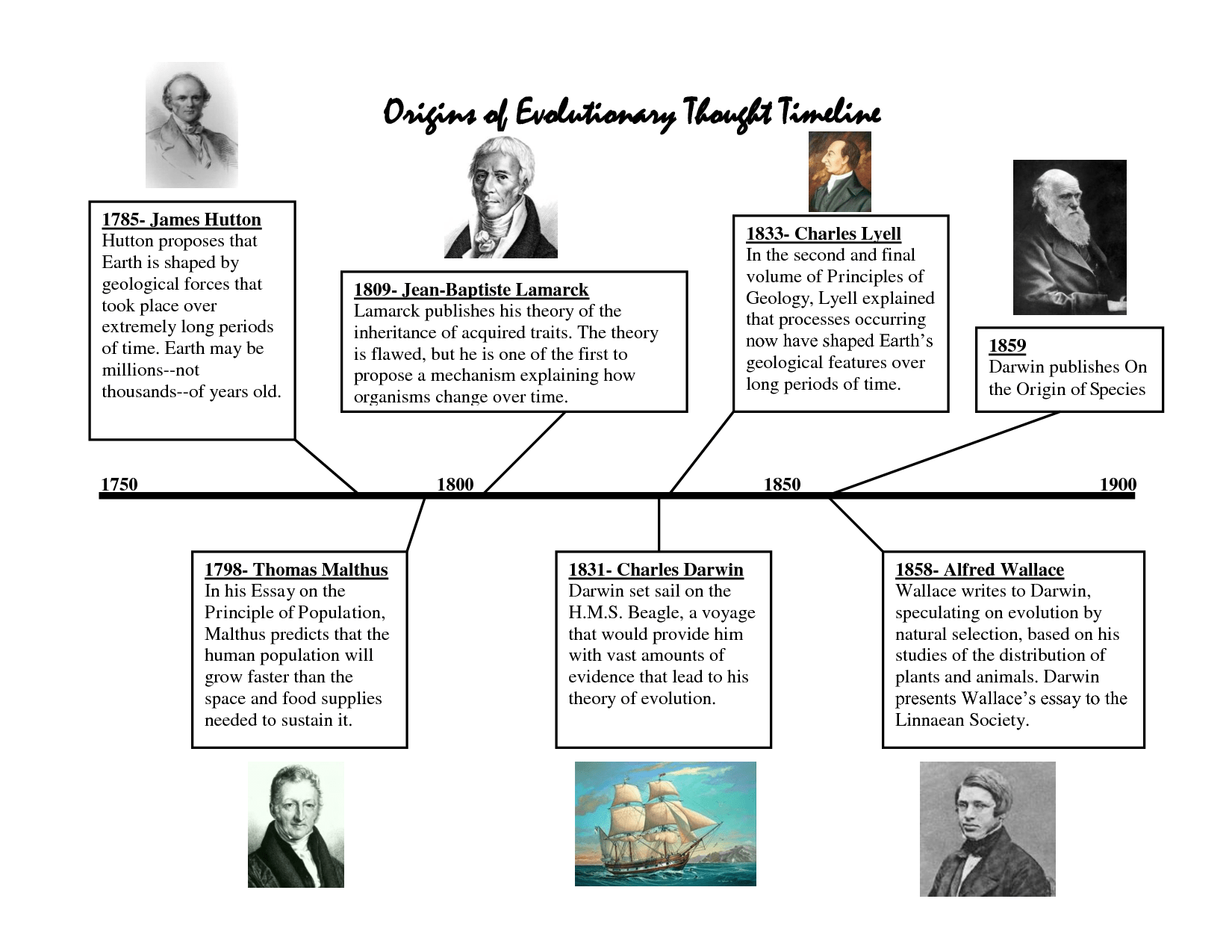 Theory Of Evolution: Theory Of Evolution History Timeline
