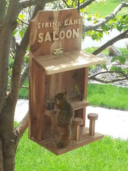 squirrel feeder chair diy bows saloon bird...scratch that - by rossc23 ... | squirrels pinterest stables