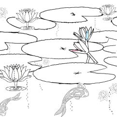Lily Diagram Printable Viper Winch Solenoid Wiring Pond Habitat Coloring Page Ponds Pinterest