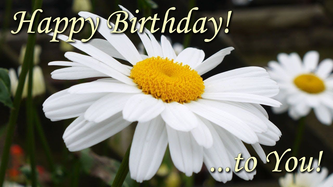 Happy Birthday To You Beautiful Flowers Pictures With