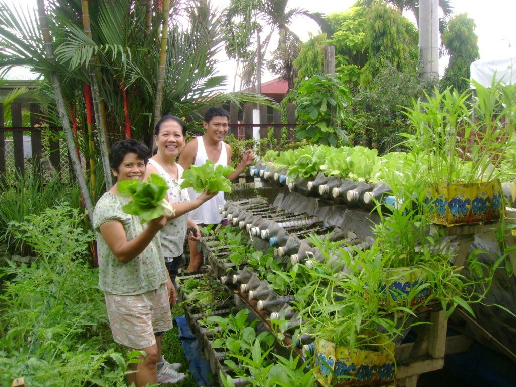 Vertical Vegetable Garden Ideas 20 Greenhouse Chickens Farm