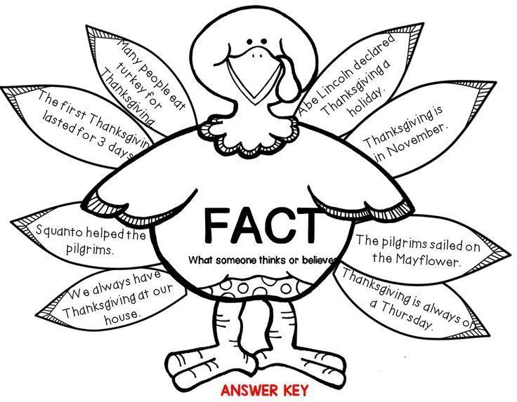 Fact and Opinion FREEBIE! Cut and paste Color Version also