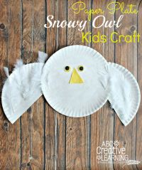 Easy Paper Plate Snowy Owl Kids Craft | Owl kids, Arctic ...