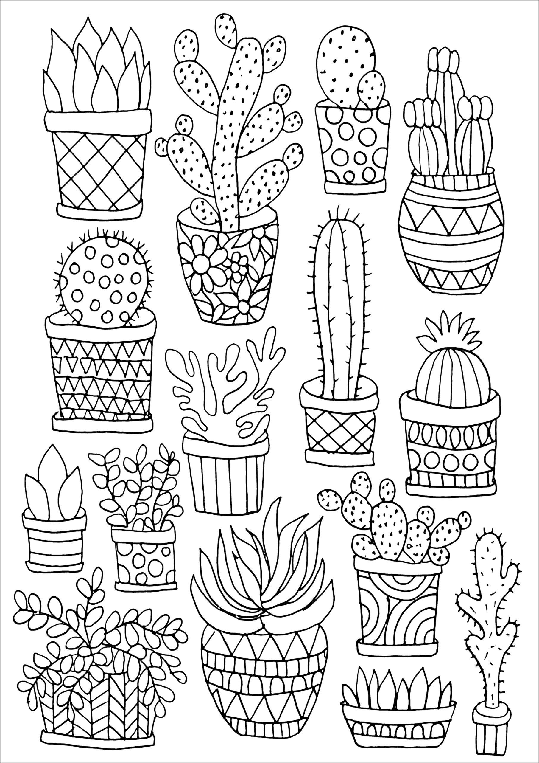 AmazonSmile: Succulents Portable Adult Coloring Book (31