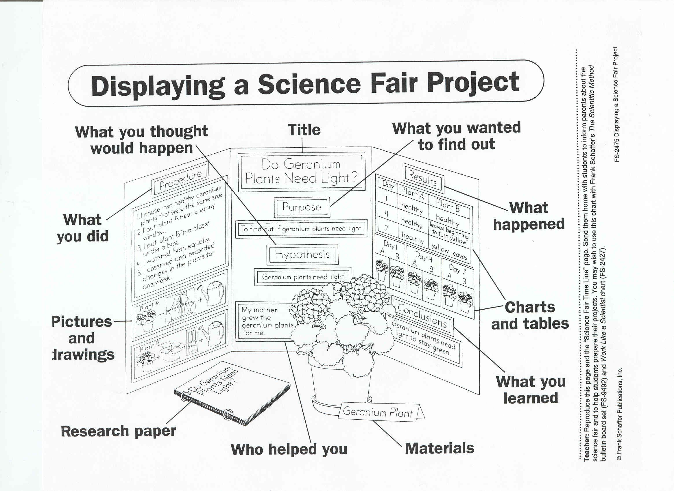 Science Fair Project Research Paper Layout Term Paper Academic