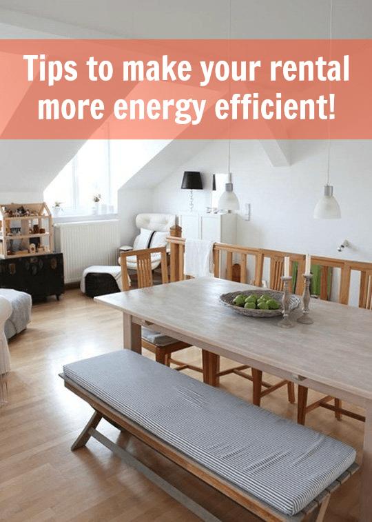Efficacy Apartments Rent