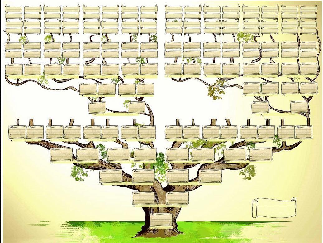 Arbre Genealogique
