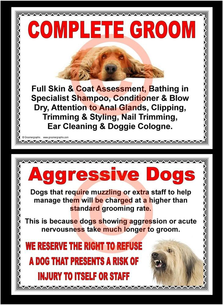 Dog grooming complete groom aggressive dogs signs by
