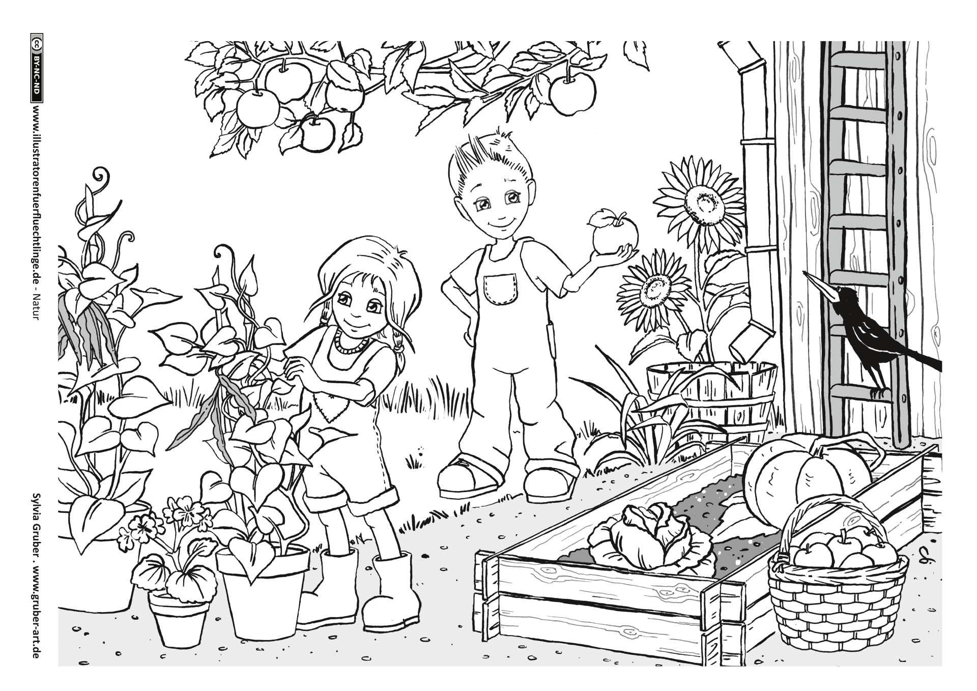 дятлов картинки раскраски на тему огород нет, какая