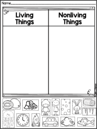 FREEBIE Living and Non-living Things sort! | Teaching ...