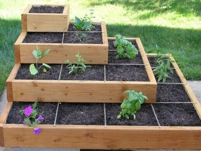 Box Gardening Ideas