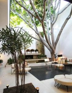 Combining nature and interior design by garrett eckbo exterior courtyard small scale furniture large tree also this is exactly how the of  house should be outside rh pinterest