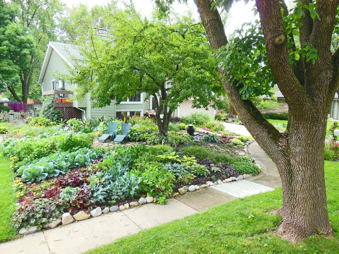 Front Lawn Vegetable Garden Gardens Designs And Vegetables