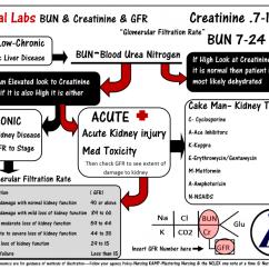 Fishbone Diagram Lab Values Normal Cub Cadet Wiring Slt1554 Best 25 43 Bun Creatinine Ideas On Pinterest