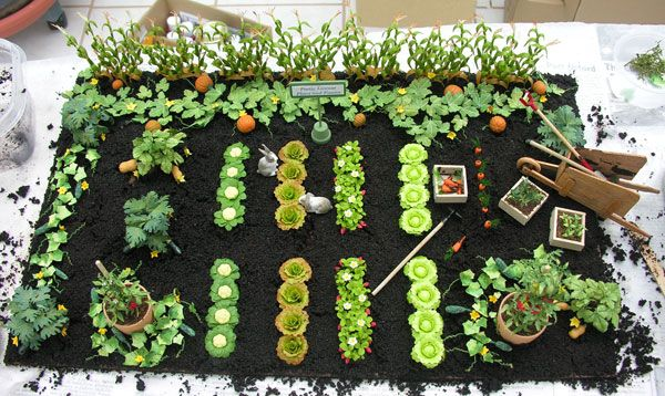 miniature garden plants & accessories
