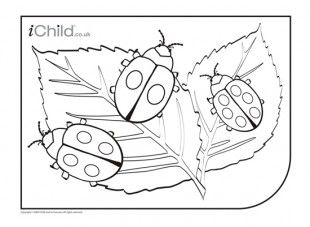 With this printable activity, you can colour in your very