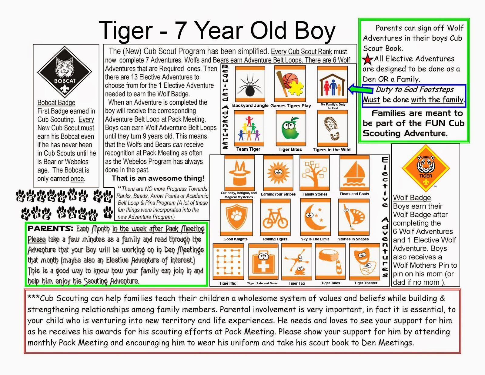 New Tiger Basics