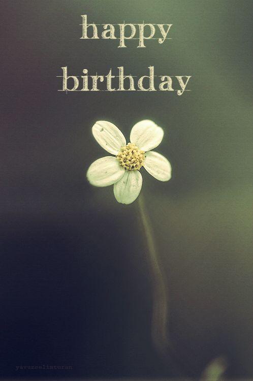 Wishes Birthday Friend Heavenly Best