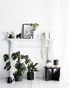 Tdc zakkia collection interior stylingindoor also            rh za pinterest