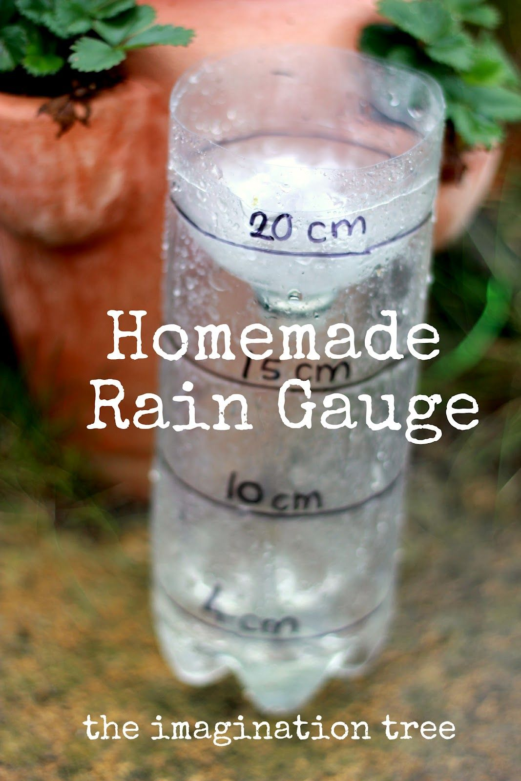 Homemade Rain Gauge