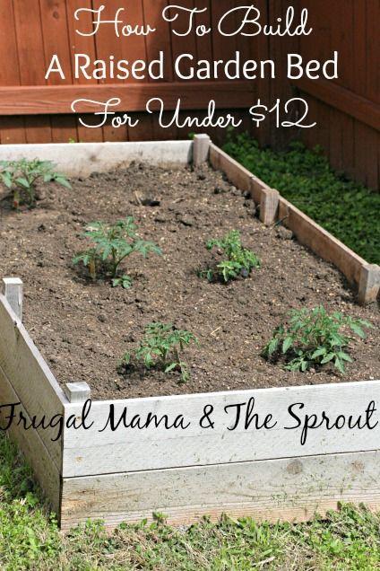 Raised Diy Beds Garden Cheap