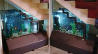 Fish tank stair case | Homes, rooms, etc... | Pinterest ...