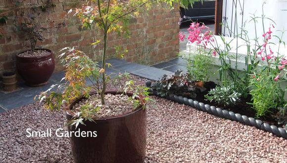 Neat Low Maintenance Front Garden Ideas Pinterest Gardens