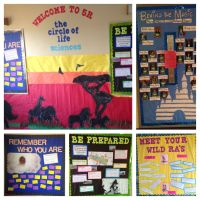 Disney's Lion King themed bulletin boards and wall decs! # ...