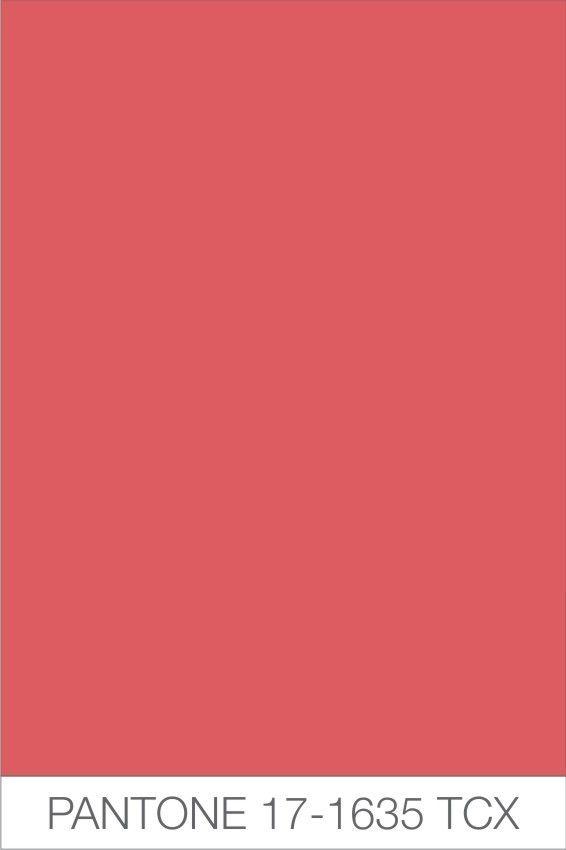PANTONE 171635  Colour Trends SS 13  Pinterest