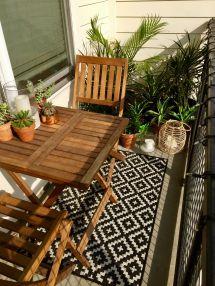 Succulents Tropical Plants Small Balcony Decor Ideas