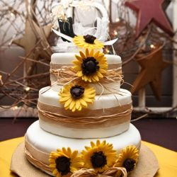 sunflower bridal shower cakes rustic sunflower wedding shower cake a quaint country wedding in zurich ontario cake photography and