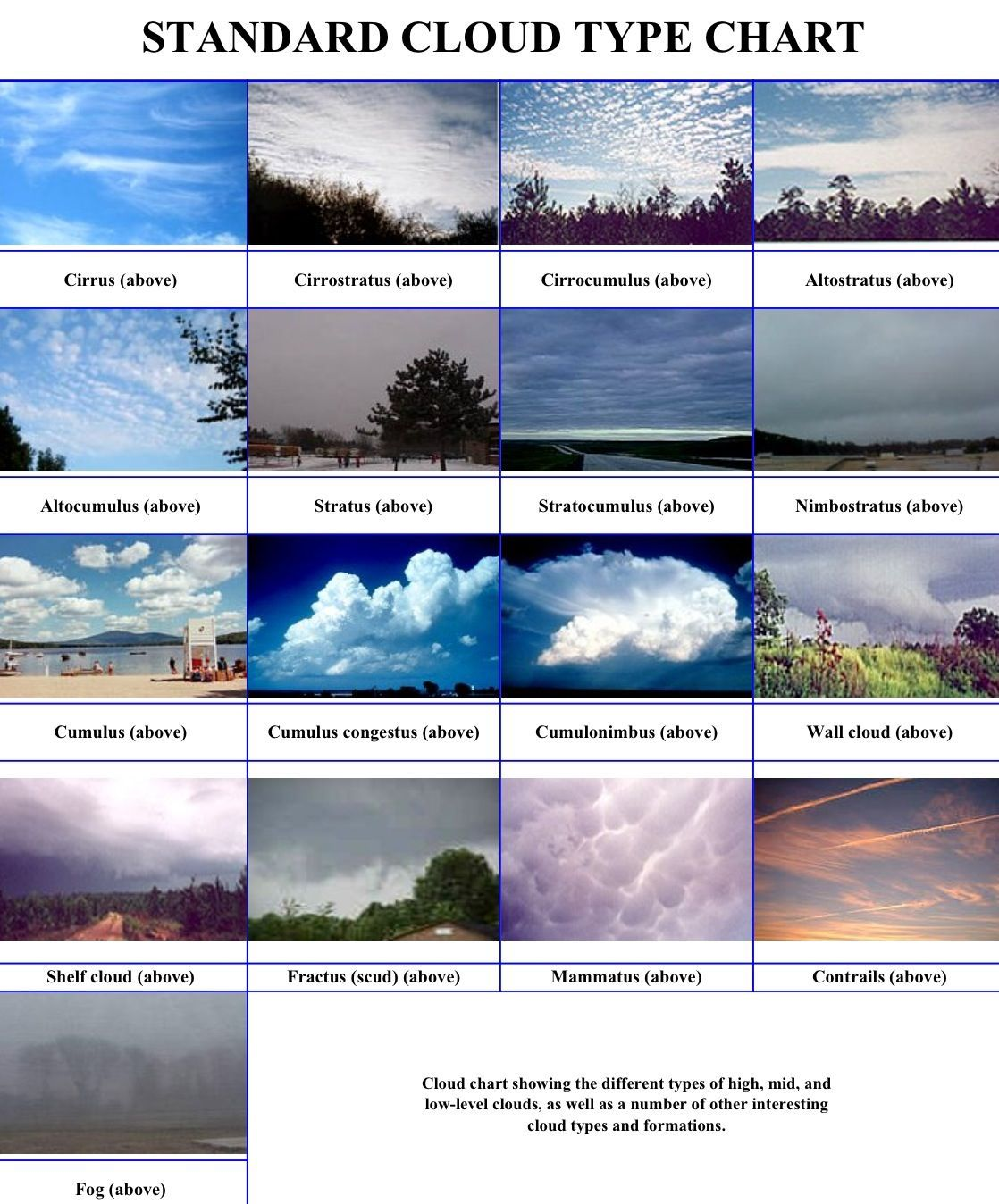Worksheet Clouds Worksheet Grass Fedjp Worksheet Study Site