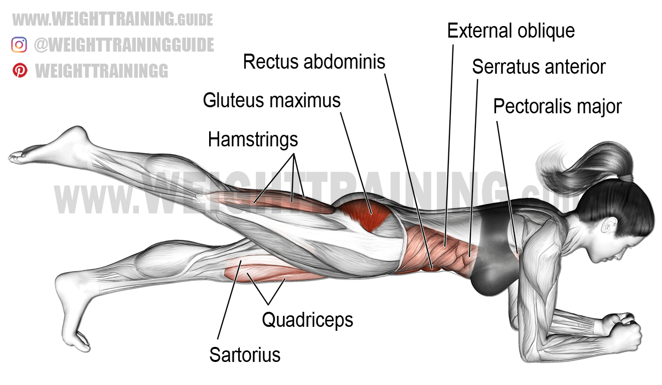One Leg Front Plank A Unilateral Isometric Isolation