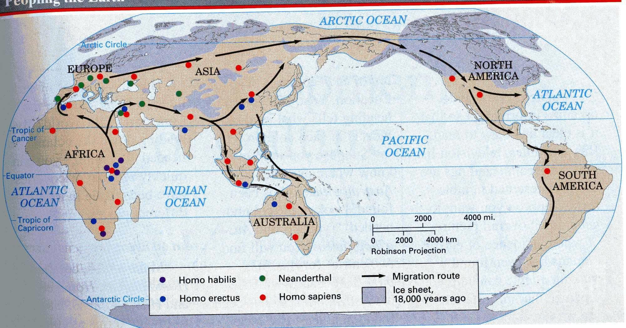 Neanderthal Worksheet