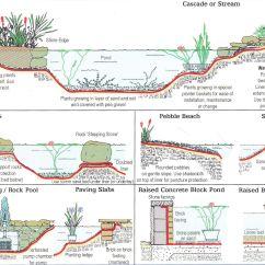 Building A Koi Pond Diagram 2005 Gmc Trailer Wiring Edging To Hide Liner Google Search Garden