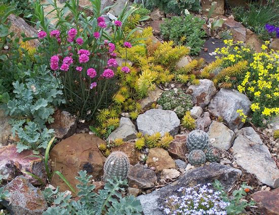 Rock Garden Ideas For Small Gardens Traditional Rock Garden