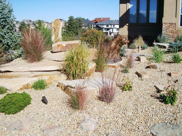 xeriscape landscaping water