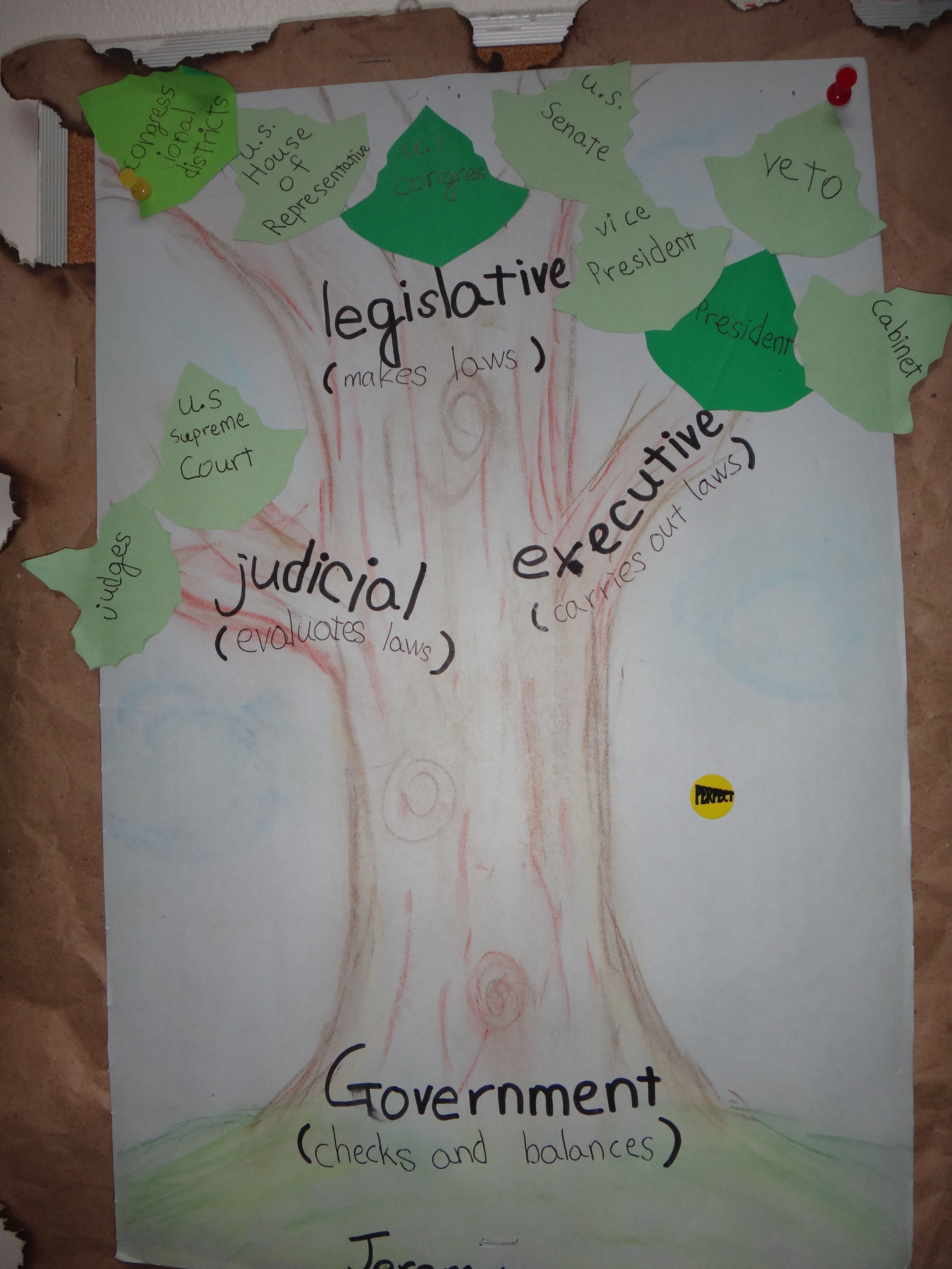 Branches Of Government A Poster With The Three Branches Of Government Their Functions And The